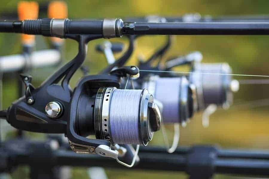 Best Spinning Reels Picture