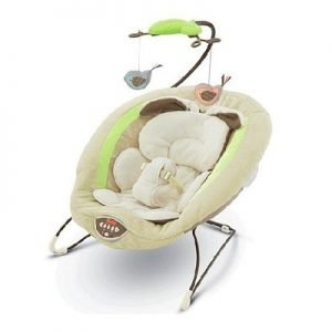 Fisher-Price Deluxe Bouncer Image